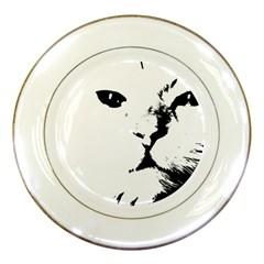 Cat Porcelain Plates