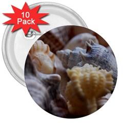 Seashells 3  Buttons (10 Pack)