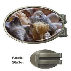 Seashells Money Clips (oval)