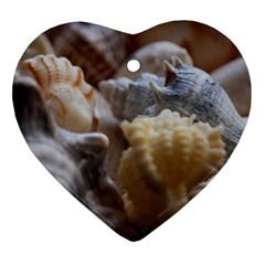 Seashells Heart Ornament (two Sides)