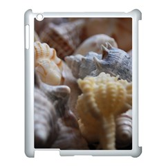 Seashells Apple Ipad 3/4 Case (white) by sherylchapmanphotography
