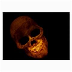 Skull Large Glasses Cloth by sherylchapmanphotography