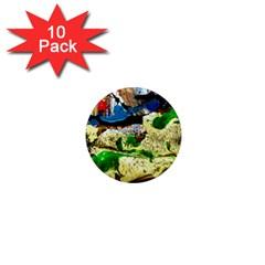Catalina Island Not So Far 4 1  Mini Magnet (10 Pack)
