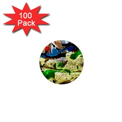 Catalina Island Not So Far 4 1  Mini Magnets (100 Pack)