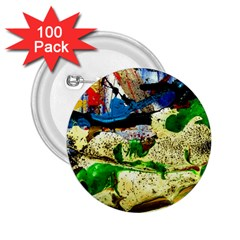 Catalina Island Not So Far 4 2 25  Buttons (100 Pack)