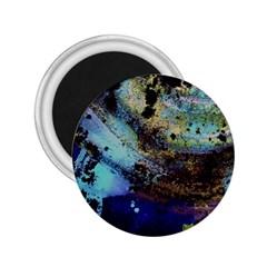 Blue Options 3 2 25  Magnets