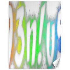 Genius Funny Typography Bright Rainbow Colors Canvas 12  X 16