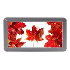 Innovative Memory Card Reader (mini)