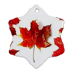 Innovative Snowflake Ornament (two Sides) by GlobidaDesigns