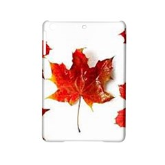 Innovative Ipad Mini 2 Hardshell Cases