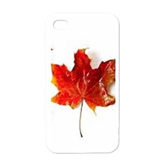 Innovative Apple Iphone 4 Case (white)