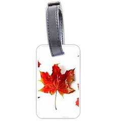 Innovative Luggage Tags (two Sides) by GlobidaDesigns