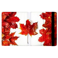 Innovative Apple Ipad 2 Flip Case