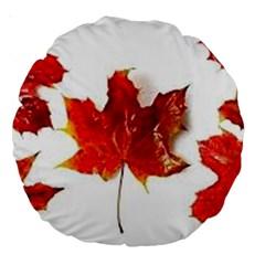 Innovative Large 18  Premium Round Cushions by GlobidaDesigns