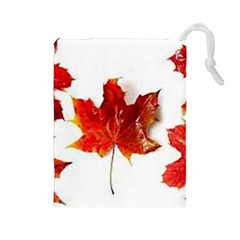 Innovative Drawstring Pouches (large)