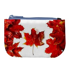 Innovative Large Coin Purse