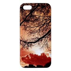 Tree Skyline Silhouette Sunset Apple Iphone 5 Premium Hardshell Case