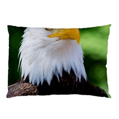 Bald Eagle Pillow Case (two Sides)