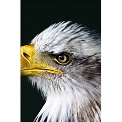 Bald Eagle Portrait  5 5  X 8 5  Notebooks