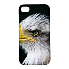 Bald Eagle Portrait  Apple Iphone 4/4s Hardshell Case With Stand