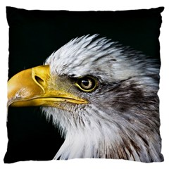 Bald Eagle Portrait  Large Flano Cushion Case (one Side)