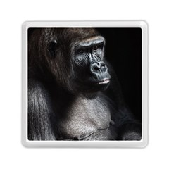 Gorilla Memory Card Reader (square)
