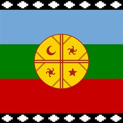 Flag Of The Mapuche People Canvas 12  X 12   by abbeyz71