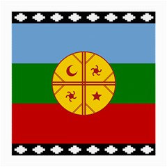 Flag Of The Mapuche People Medium Glasses Cloth by abbeyz71
