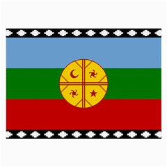 Flag Of The Mapuche People Large Glasses Cloth (2 Side) by abbeyz71