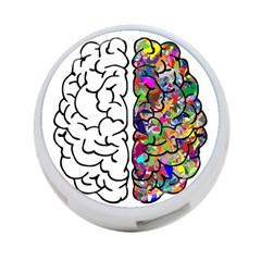 Brain Mind Anatomy 4 Port Usb Hub (two Sides)