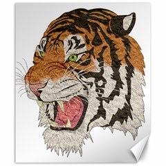 Tiger Tiger Png Lion Animal Canvas 20  X 24