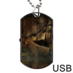 Mammal Nature Wood Tree Waters Dog Tag Usb Flash (two Sides) by Simbadda
