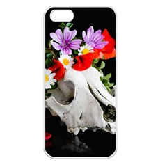 Animal Skull With A Wreath Of Wild Flower Apple Iphone 5 Seamless Case (white) by igorsin