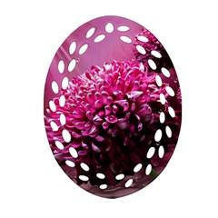 Majestic Flowers Ornament (oval Filigree)