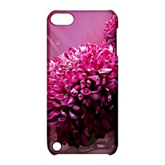 Majestic Flowers Apple Ipod Touch 5 Hardshell Case With Stand