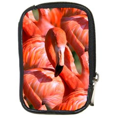 Pink Flamingo Flock Pattern Compact Camera Cases