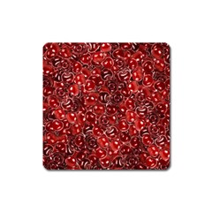 Sweet Cherries Square Magnet by eyeconart