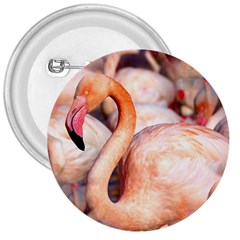 Pink Flamingos Flock 3  Buttons