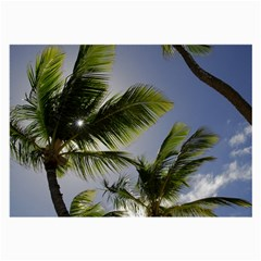 Palm Trees Tropical Beach Scenes Coastal   Large Glasses Cloth