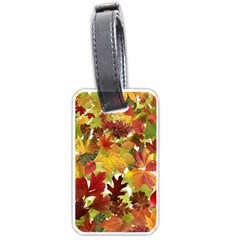 Autumn Fall Leaves Luggage Tags (one Side)  by LoolyElzayat