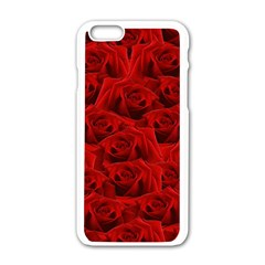 Romantic Red Rose Apple Iphone 6/6s White Enamel Case by LoolyElzayat
