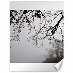 Tree Nature Landscape Canvas 36  X 48