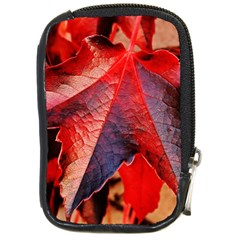 Wine Partner Wild Vine Leaves Plant Compact Camera Cases