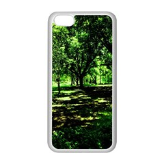 Hot Day In Dallas 26 Apple Iphone 5c Seamless Case (white)