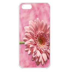 Background Texture Flower Petals Apple Iphone 5 Seamless Case (white)