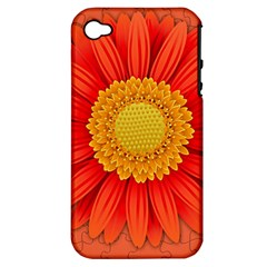 Flower Plant Petal Summer Color Apple Iphone 4/4s Hardshell Case (pc+silicone)