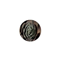 Succulent Green Pink Rosettes 1  Mini Buttons by Sapixe