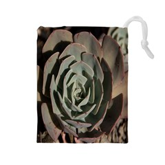 Succulent Green Pink Rosettes Drawstring Pouches (large)