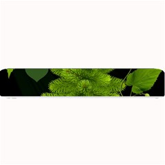 Decoration Green Black Background Small Bar Mats