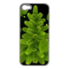 Decoration Green Black Background Apple Iphone 5 Case (silver)